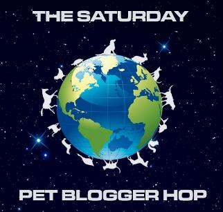 Pet blogger blog hop badge