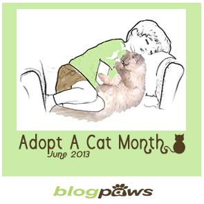 Adopt a Cat month Badge