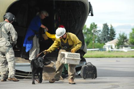 Helping Pets off helicopter
