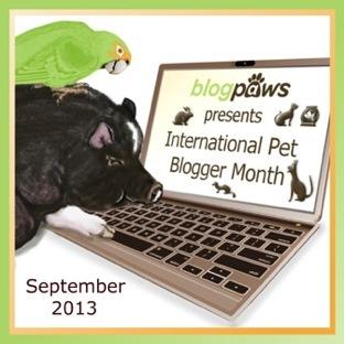 International Pet Bloggers Month