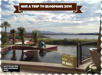 BlogPaws or Bust 2014