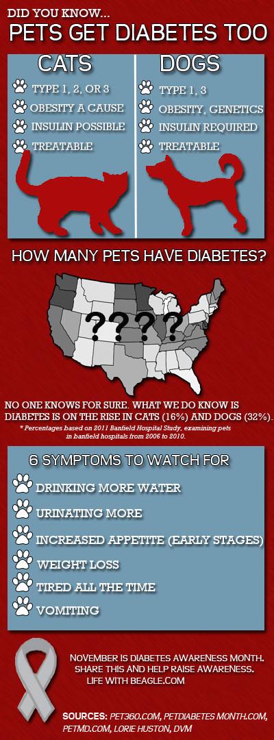 Infographic-diabetes-final